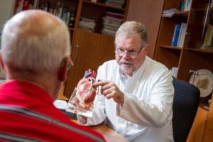 Ein Arzt erklärt das Model eines menschlichen Herzen